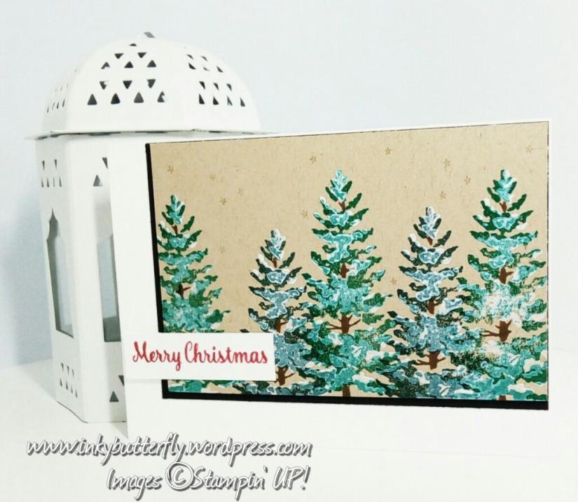 Snowy Pines FMS316