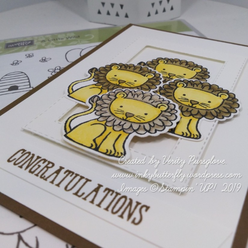 Wild Congratulations