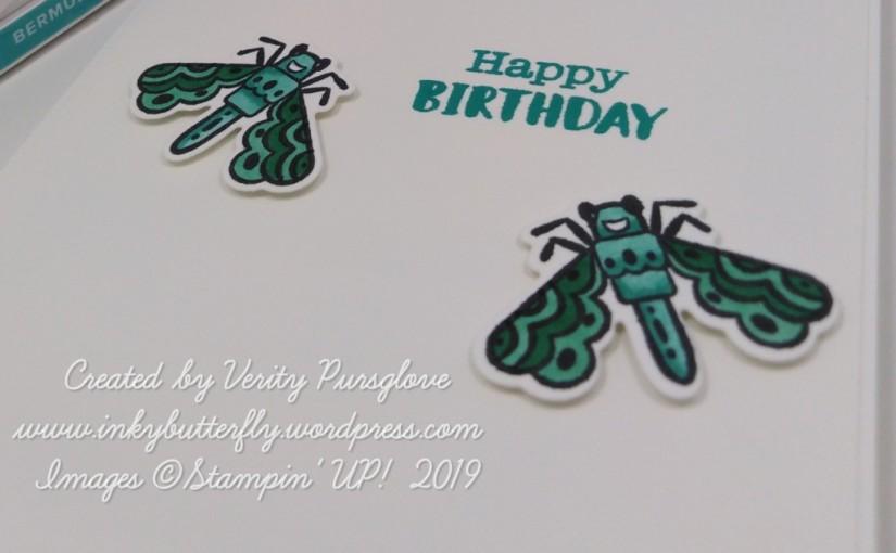 Birthday Bugs!
